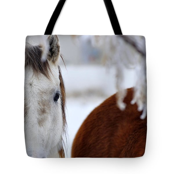 Fence Friend 13195 2 Tote Bag