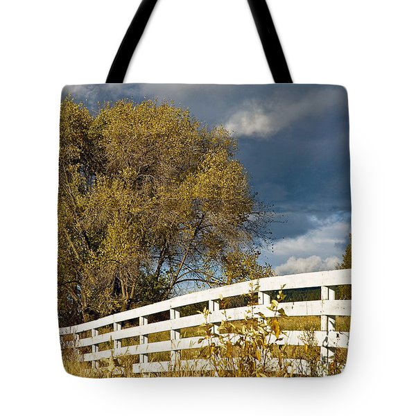 Fence Tote Bag by Michele Wright