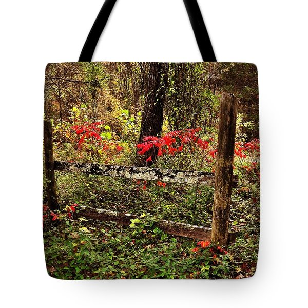 Fence On The Buffalo Tote Bag by Marty Koch
