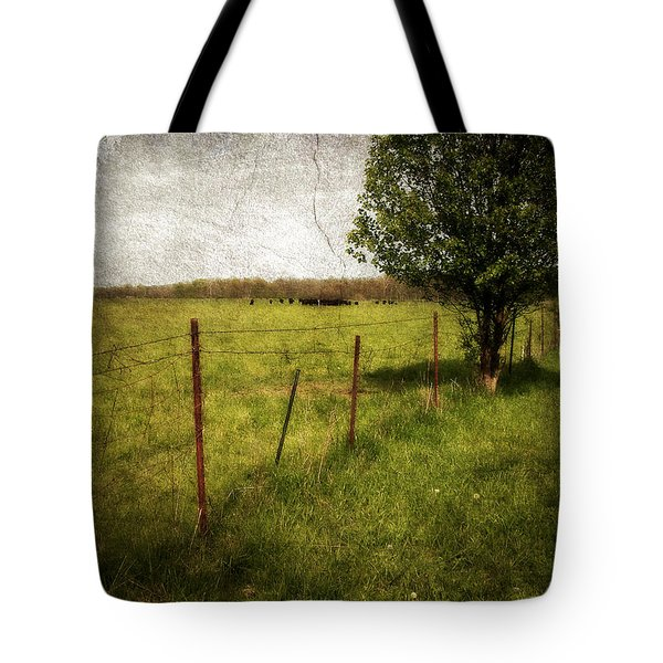 Fence With Tree Tote Bag by Cynthia Lassiter