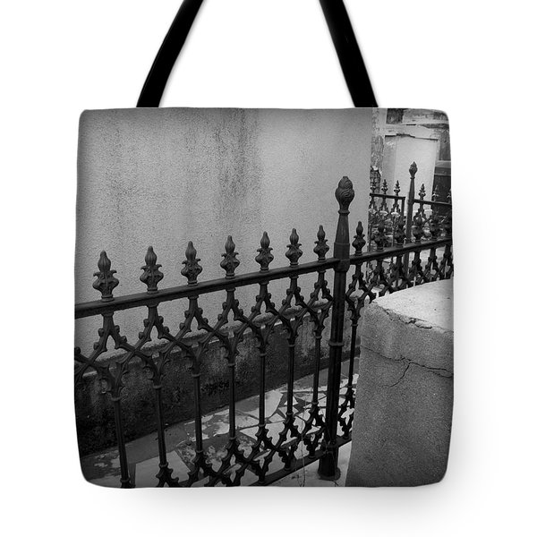 Fenced In Tote Bag by Beth Vincent