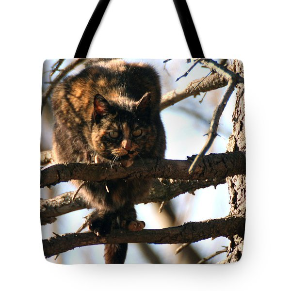 Feral Cat In Pine Tree Tote Bag