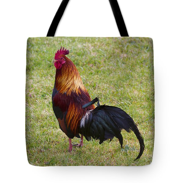 Feral Rooster Tote Bag by Mike  Dawson