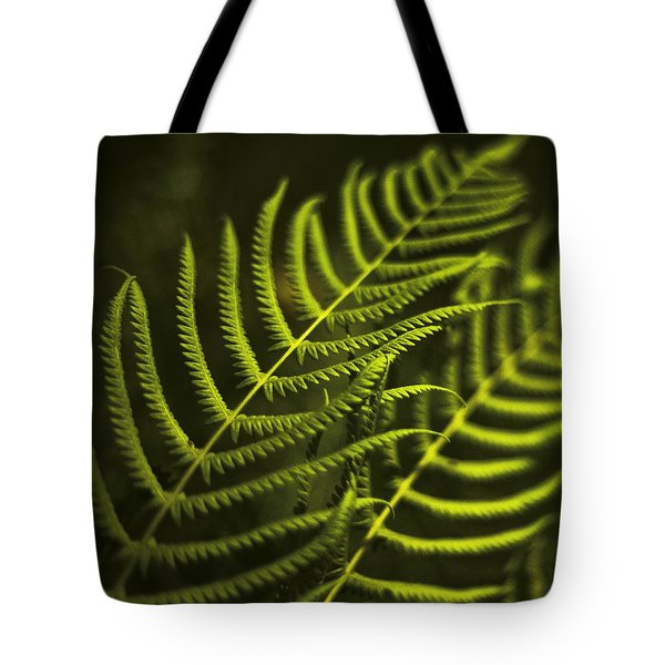 Fern Tote Bag by Bradley R Youngberg