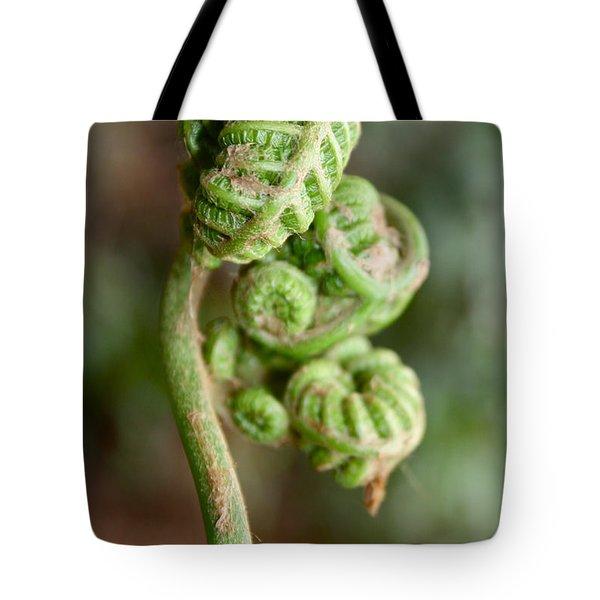 Fern Bud Tote Bag by Venetia Featherstone-Witty
