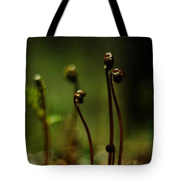 Fern Emergent Tote Bag