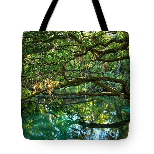 Fern Hammock Tote Bag