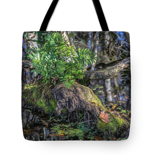 Fern In The Swamp Tote Bag by Jane Luxton