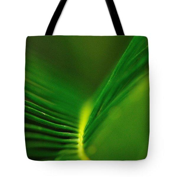 Fern Lines Tote Bag