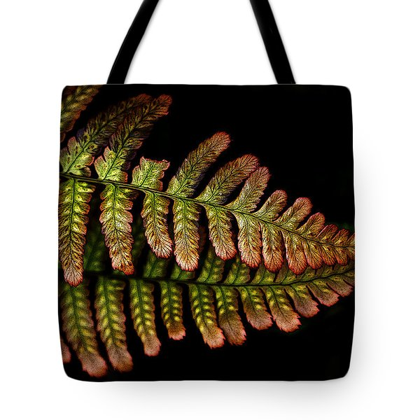 Tote Bag featuring the photograph Fern by Sonya Lang