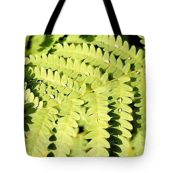Tote Bag featuring the photograph Fern With Dew by Mary Bedy