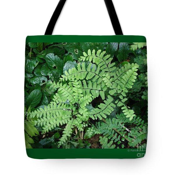 Ferns-iii Tote Bag