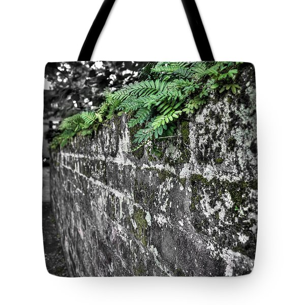 Ferns On Old Brick Wall Tote Bag