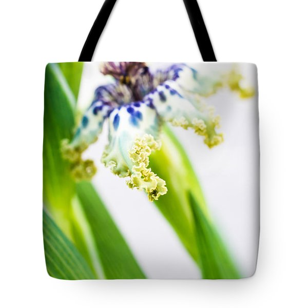 Ferraria Crispa Tote Bag by Priya Ghose