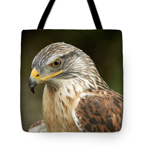 Tote Bag featuring the photograph Ferruginous Hawk by Doug Herr