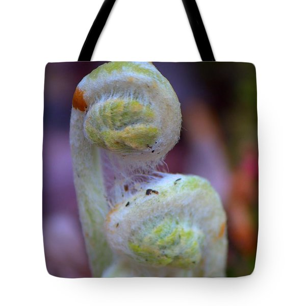 Fiddlehead Fern Tote Bag