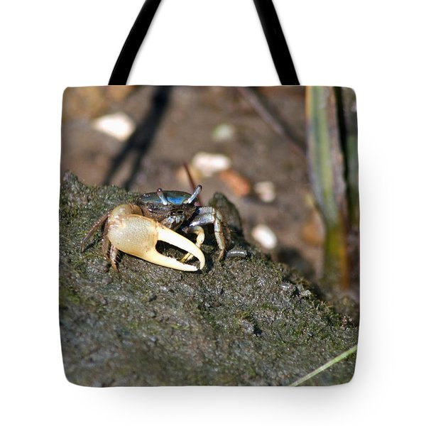 Tote Bag featuring the photograph Fiddler On The Marsh by Greg Graham