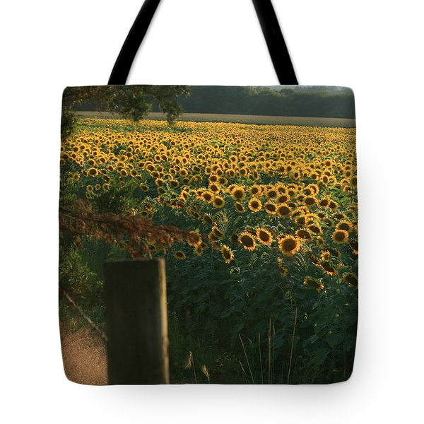 Field Dreams No.2 Tote Bag