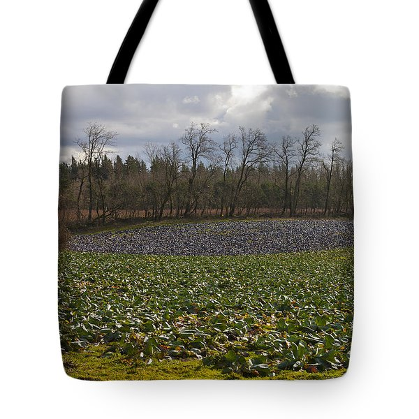 Tote Bag featuring the photograph Field Of Color 2 by Belinda Greb