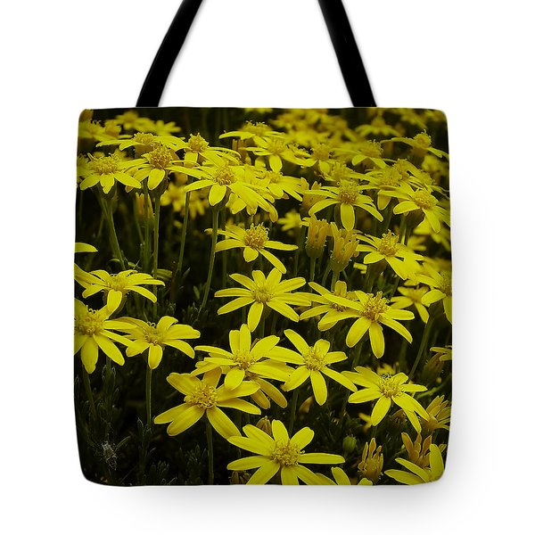 Tote Bag featuring the photograph Field Of Gold by Lucinda Walter