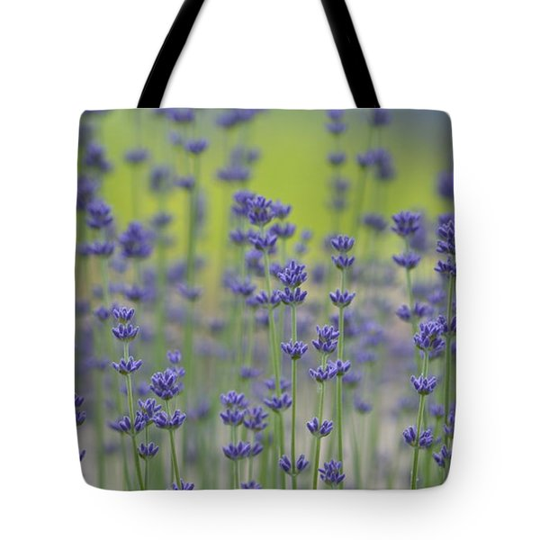Field Of Lavender Flowers Tote Bag