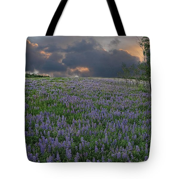 Field Of Lupine Tote Bag by Ed Hall