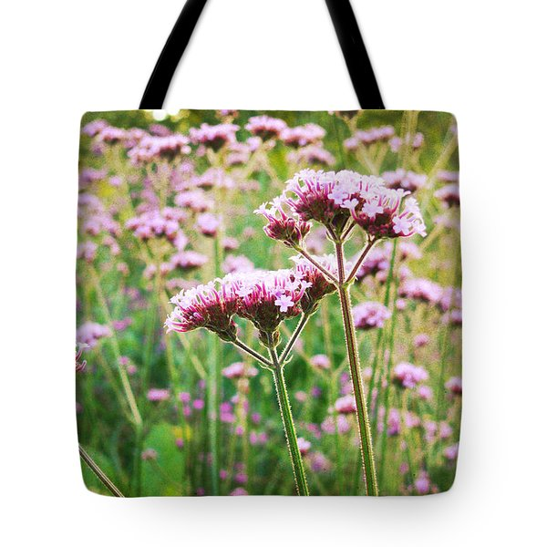 Field Of Purple Tops Tote Bag by Maria Janicki