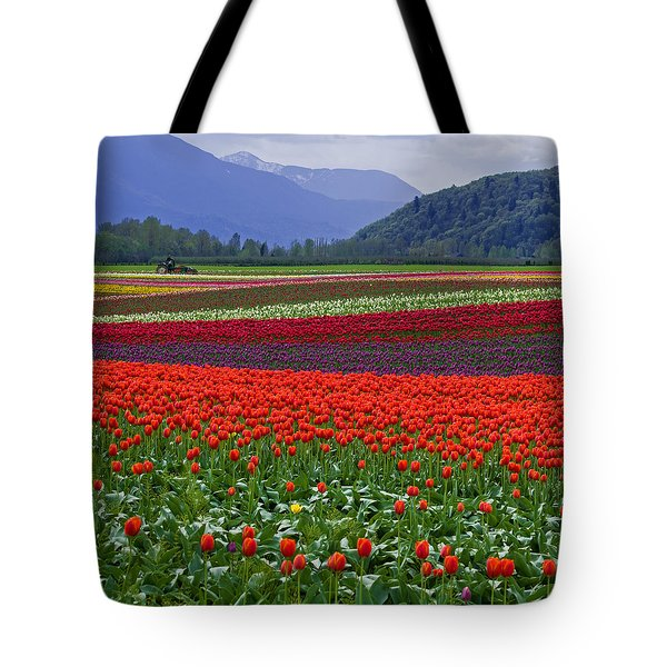 Field Of Tulips Tote Bag by Jordan Blackstone