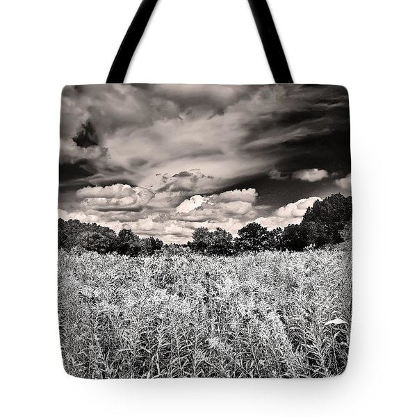 Fields Of Gold And Clouds Tote Bag