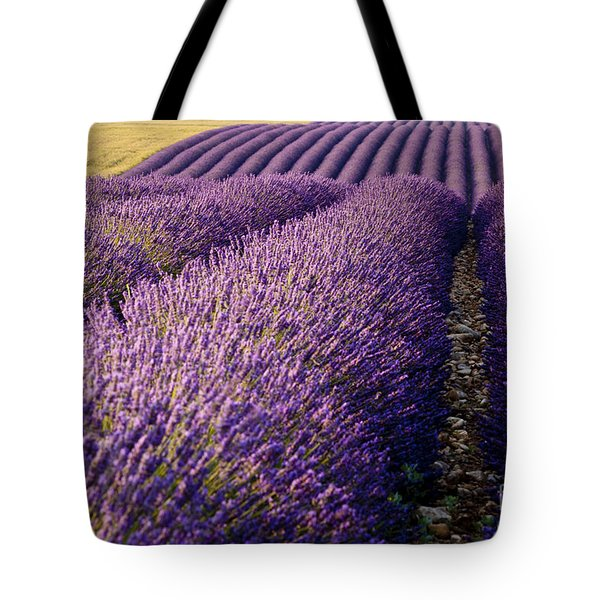 Fields Of Lavender Tote Bag by Brian Jannsen