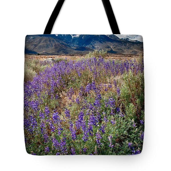 Fields Of Lupine Tote Bag