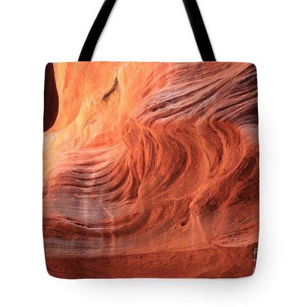 Fiery Buckskin Walls Tote Bag