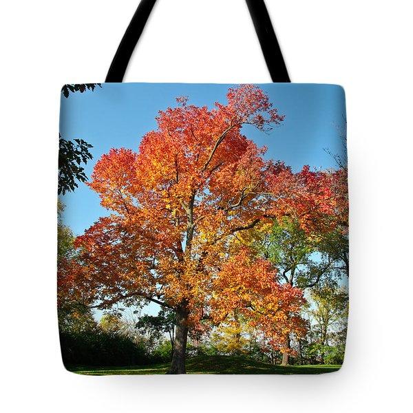 Fiery Fall Tote Bag