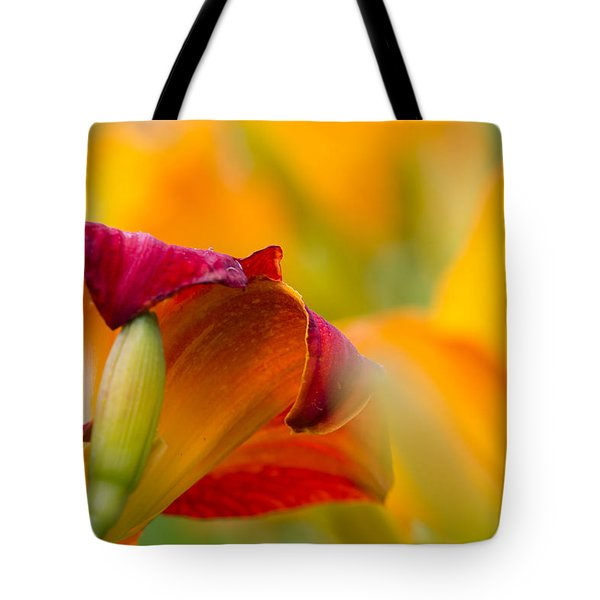 Fiery Flora Tote Bag by Mary Amerman