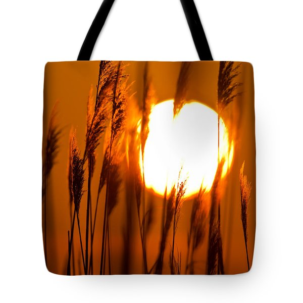 Fiery Grasses Tote Bag