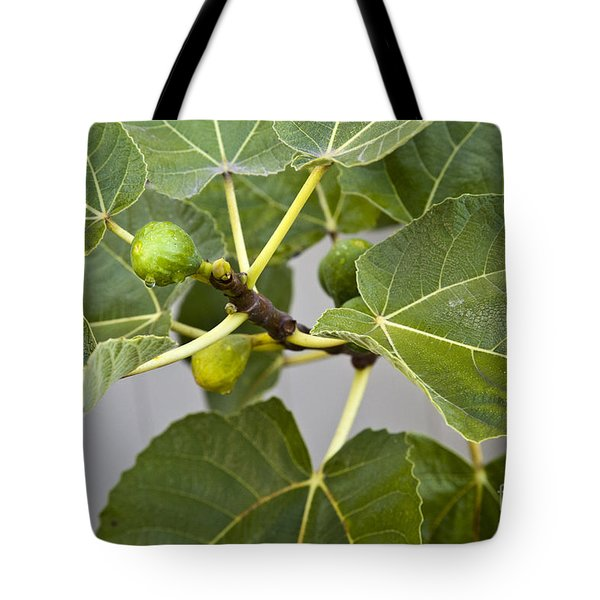 Tote Bag featuring the photograph Figalicious by David Millenheft