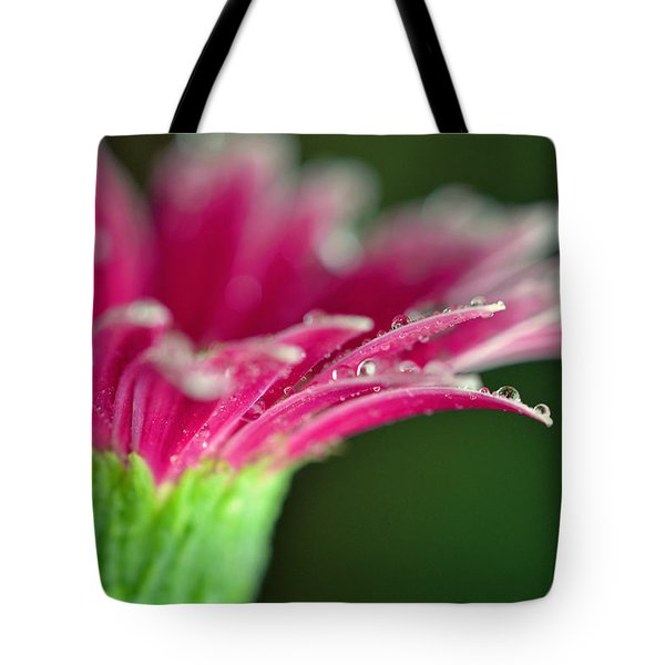 Filled With Glory Tote Bag by Melanie Moraga
