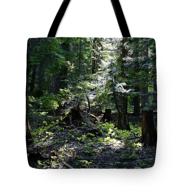Tote Bag featuring the photograph Filtered Sunlight Peace by Ben Upham III