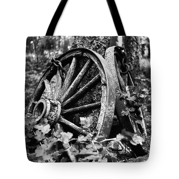 Final Rest Tote Bag by Aaron Aldrich