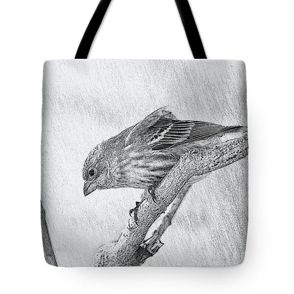 Finch Digital Sketch Tote Bag