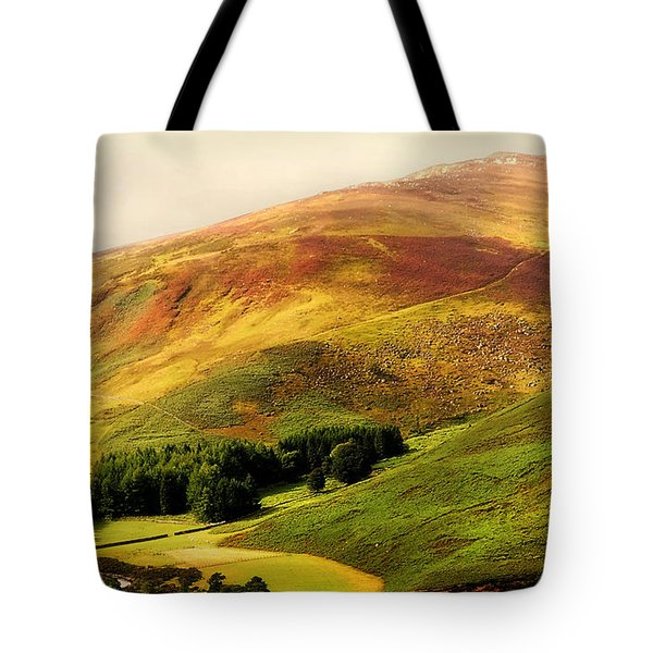 Find The Soul. Golden Hills Of Wicklow. Ireland Tote Bag by Jenny Rainbow