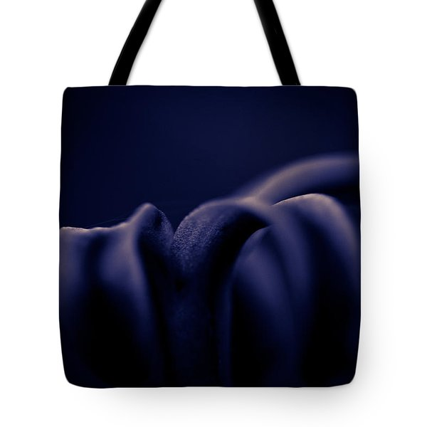 Finding Comfort In The Shadows Tote Bag