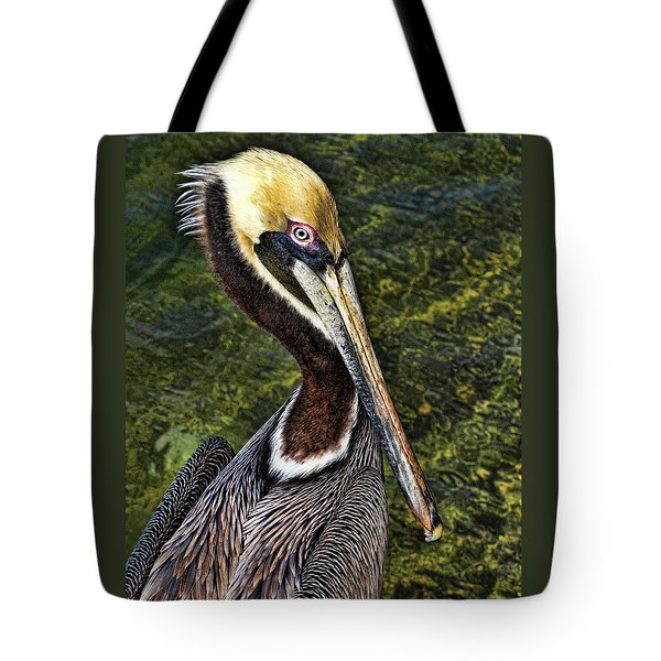Pelican Close Up Tote Bag by Paula Porterfield-Izzo