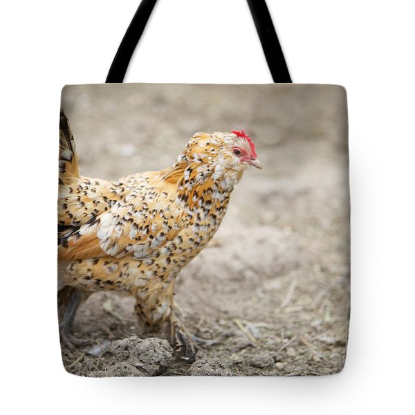 Tote Bag featuring the photograph Fine Lady by Erika Weber