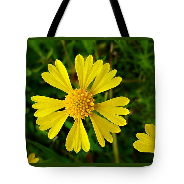 Tote Bag featuring the photograph Wild Fine Leaved Sneezeweed by William Tanneberger