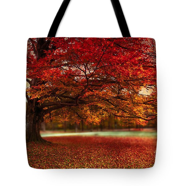 Finest Fall Tote Bag by Hannes Cmarits