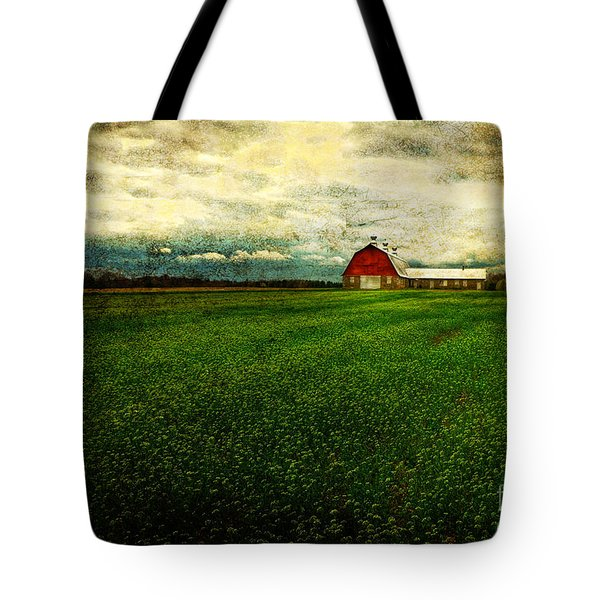 Finished Tote Bag by Lois Bryan