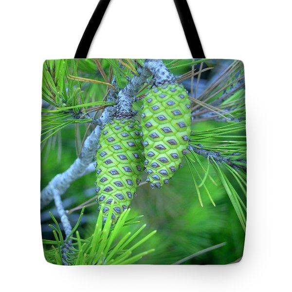 Fir Cones Tote Bag