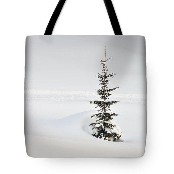 Fir Tree And Lots Of Snow In Winter Kleinwalsertal Austria Tote Bag by Matthias Hauser