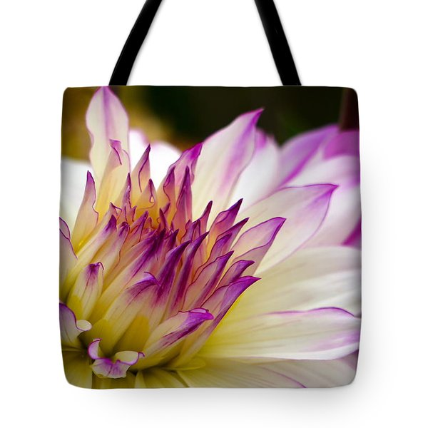 Tote Bag featuring the photograph Fire And Ice - Dahlia by Jordan Blackstone